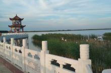 吉林省大安市嫩江湾国家湿地公园。