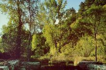 喇叭沟门景区,从艳阳高照到月上柳梢头,起风了,山里人家的古朴热情柔和了萧瑟料峭的秋风和瑟瑟发抖的我们