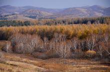十一黄金周,我来到克什克腾,驾车行驶在黄岗梁国家森林公园,秋天的感觉扑面而来。只见无边无际的森林,仿