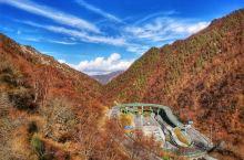 人间忽晚,山河已秋。青海互助北山国家森林公园秋景……