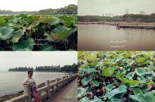 2015年9月5日 武汉三日游-东湖、昙华林、楚河汉街 一大早起来就去了东湖,听说东湖很大!去看了,