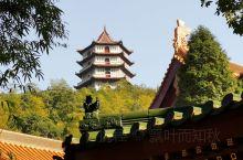 东林秋景——东林寺,位于江西省九江市庐山西麓,北距九江市16公里,东距庐山牯岭街 50公里。因处于西