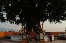 我们一早游览过菩提寺,便去树包塔。走在芒市的街头,有种异域风情的感觉。树包塔离菩提寺大概1500米,