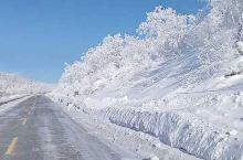 亚雪公路,美不胜收 雪乡国家森林公园