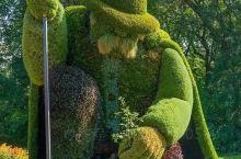 非常好的一个植物园,值得一看,比看过的其他植物园体验要好很多,设计的参观路线非常合理,各个区域特色也