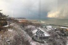 在酒店内看日本的雪景,和东北的雪景不同的是,多了一片大海,雪很厚,但是打开窗户向外看会怀疑是不是挂了