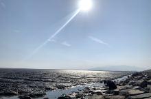 瑞安东海滩涂外:一望无际的自由跟风飘随! 瑞安明镜公园:晨阳的暖煦弥漫着一片祥和!
