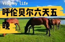 呼伦贝尔旅游攻略#呼伦贝尔大草原#呼伦贝尔旅行#呼伦贝尔旅游包车#内蒙古旅游攻略 呼伦贝尔大草原之旅