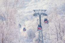 亮点特色: 前两天去吉林北大壶滑了滑雪,没想到北大壶除了滑雪其实山上的风景也是很美的,滑雪的同时在享