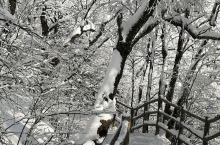 栾川老君山风景区是国家5A级风景区,冬天的老君山也很美