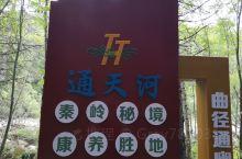 通天河国家森林公园,位于陕西省宝鸡市凤县。这里是一个天然氧吧,世外桃源,原始森林。著名的景点有三个,