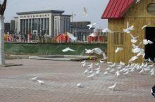 """博兴县人民公园,是博兴县2010年城市建设重点工程,也是博兴县""""民生建设年""""、 """"绿化建设年""""、 """""""