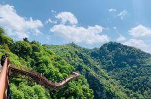 春天里的少华山,可美了,门票60元,进山需坐大巴车,是30元,可以坐10公里,还有索道,坐索道可以去