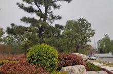 周公湖紫薇花卉园