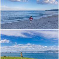 阳光海岸图片