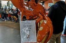 淘波虾场,可以棰钓,可以观赏,还可以有美食,我们每年都要来这里。