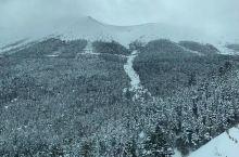 大雪封山!瑞雪兆丰年!