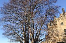电影《勇敢的心》华莱士英雄故事就在这里!冬天的斯特林城堡不缺美景 2018年的圣诞节,蓝天下的斯特林