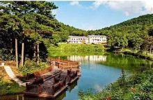 藏在四明山山顶的酒店,森林别墅、天然湖泊,沿山漫步水杉、瀑布、溪流…