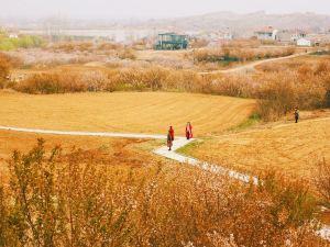 Xuzhou,Recommendations
