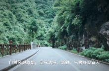 """大觉山位于江西省抚州市,野生动植物资源丰富,分布广,被专家誉为""""天然氧吧,全国罕见的动植物基因库""""。"""