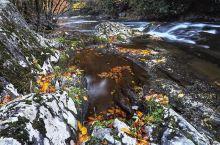 喜欢万物但都不及你的风采面貌  位置信息:Great Smoky Mountains Nationa