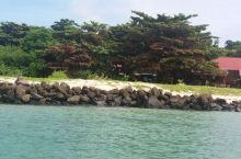 神秘的海龟岛