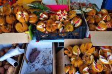 在沙巴/加里曼丹岛上特有的红榴槤,不过不像其他榴槤水果一样,不可以这样吃,要加香料酱料煮过才可以吃