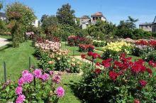 寻找他泊花园花园里别具一格的美  从小,我就喜欢各种花花草草,不知道为什么,就莫名觉得这些东西充满了