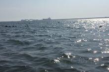 住在绥中东海岸农家院老板亲自开船带我们出海游玩。