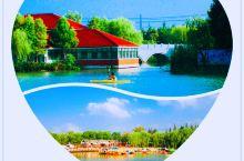 """【水上运动的乐园】       顾村公园配套""""五个活动中心"""":悦林湖景观中心、青少年活动中心、康健活"""