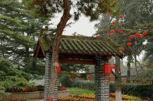 感受匠人李春的技艺:赵州桥,记得小学语文书上有篇课文就是