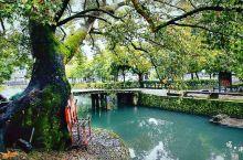 丽水古街(位于楠溪江风景区的核心区域)建于蓄水堤上,曾是汇集古人聪明才智的水利工程。300余米的长廊