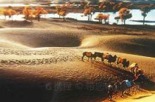3月 南疆人文杏花摄影游  新疆很多地方都有大面积的杏林,在每年的三月份,当气温开始回暖,帕米尔高