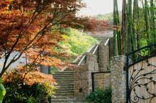 美丽源于自然,位置如同民宿名字【山中】,非常贴切,得天独厚的步道直达莫干山景区!是来到莫干山慢生活或
