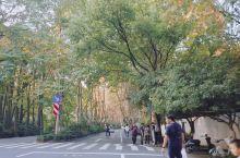 秋天的杨公堤真的太美了,99%的人不会玩转的杭州,是因为没有骑行过杨公堤。