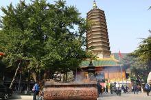 八大处公园与许多年前比变化太大了。翻新的寺庙透着奢华且香火很旺。