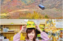 日本小众旅游地富山旅行 游玩 立山黑部:又到秋季红叶季,从黑部->立山的翻山,在黑部大坝、大观峰看黑
