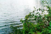 水光潋滟晴方好,山色空蒙雨亦奇。 欲把西湖比西子,淡妆浓抹总相宜。 ……苏轼《自饮湖上初晴后雨》。