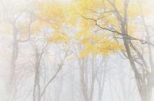 雾漫峨眉山。