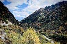 怒江亚坪山谷 高黎贡立体植物种群的画卷