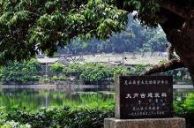 """广西有个神奇古村,地理中国曾用""""古村奇宅""""形容它,设计更是巧妙         在广西南部,有这么一"""