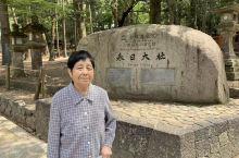 奈良公园里的梅花鹿不怕人,看到游人手上有东西就毫不客气的围上来,我们吃个冰淇淋还要躲起来!下午到大阪
