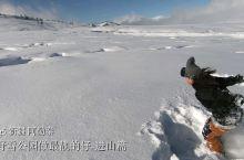 阿勒泰将军山野雪公园~去冰雪的奇幻世界里,做最靓的仔~进山篇小预告噢