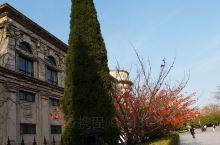 大连旅顺太阳沟的枫叶和旅顺博物馆一日游