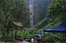 冬季能看到这么壮观的瀑布和如此茂盛的植被,真的不虚此行!景区还对省外游客打五折,真的太幸运和感动了