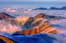 《又想骗你去武功山系列》 云海翻腾,阳光普照的这一刻真的是美翻。 所有的风景,都是可遇而不可求,所遇