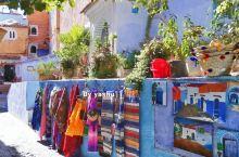 舍夫沙万是世界著名三大蓝白小镇之一,这里的房屋以蓝白为主,却也保留着砖墙自然的色泽。午后的阳光慵懒地