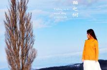 北海道最美雪景,在美瑛寻找肯与玛丽之树! 在来之前,看过很多美瑛的风景,也曾知道如果来北海道,不来美