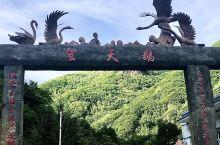 长白山的望天鹅风景区,是处很有特色引人入胜的石质公园,由天池西坡包车坐了约四个小时,沿途经过鸭绿江,